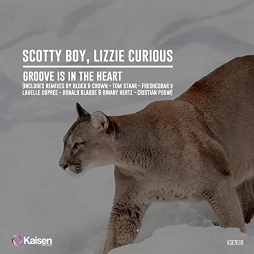 Groove Is In The Heart (Donald Glaude and Binary Hertz Remix)
